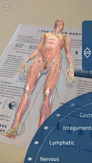 insan-anatomisi-nedir