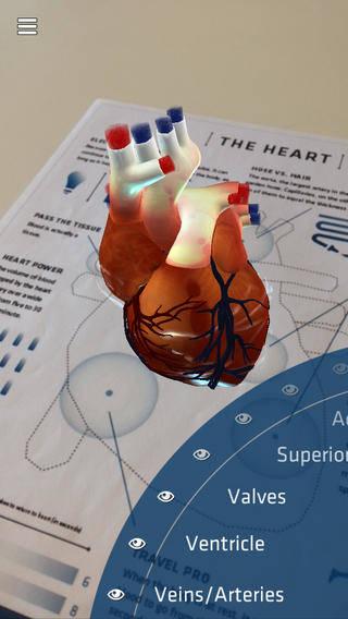 kalp-anatomisi-nedir